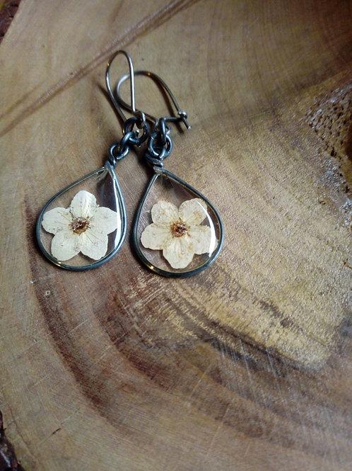 orecchini trasparenti, filo brunito, monachella arg,brunito, fiore :biancospino