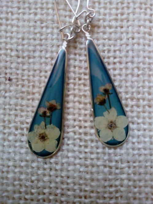 orecchini fondo celeste, monachella ag.925, fiori :biancospino