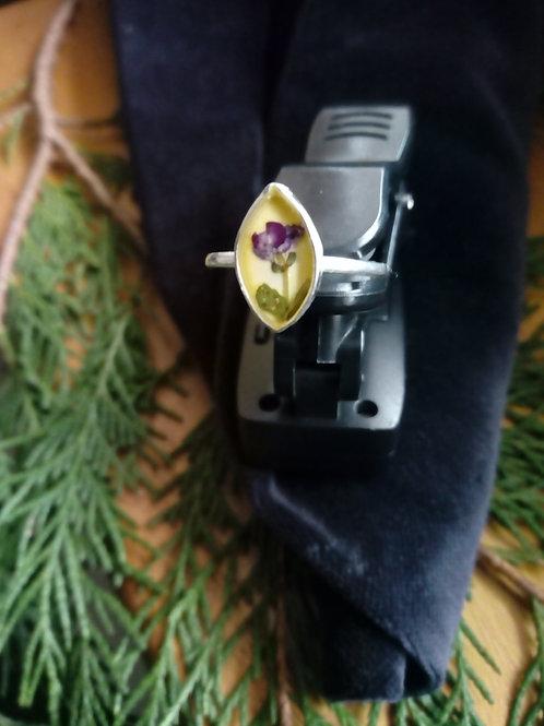 anello regolabile silver plate, alisso violetta