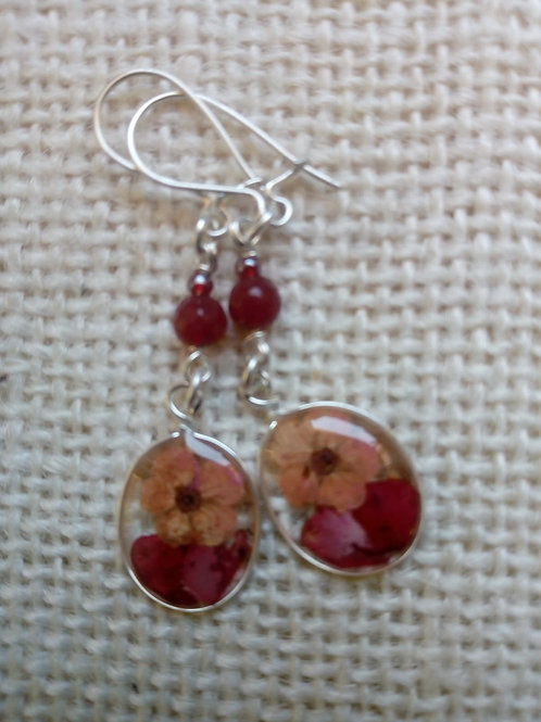 orecchini trasp, monachella ag.925, fiori: bianc. petalo verbena, pietra:rubino