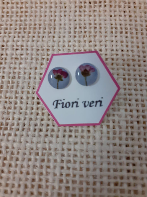orecchini fondo indaco, nichel free, fiore:alisso rosa