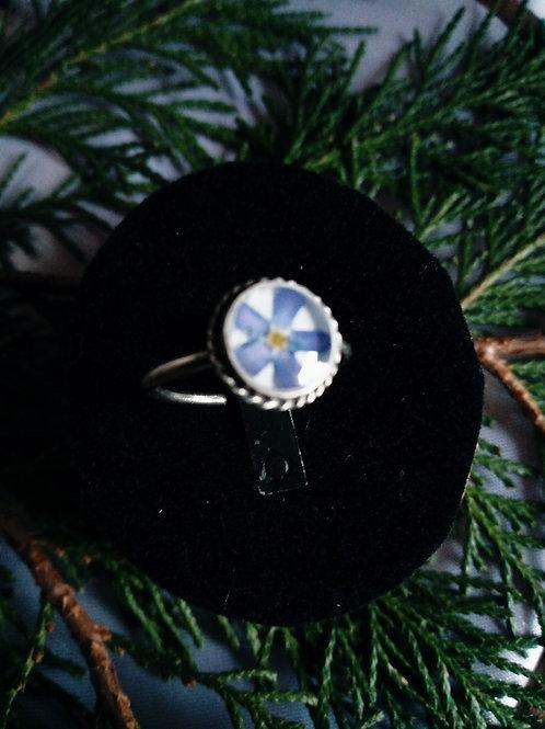 anellino regolabile, silver plate, con miosotys