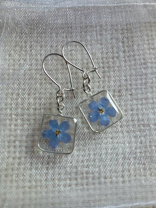 orecchini trasparenti,monachella argento 925,fiore:miosotys