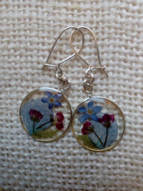 orecchini traasparenti,monachella ag.925,fiori:miosotys,alisso