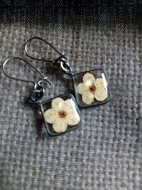 orecchini filo brunito, mon.arg 925, fiore biancospino