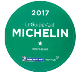 csm_guide_vert_michelin_0f6a0370e1_edited