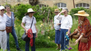 Le jardin du château redécouvre les bienfaits de la permaculture