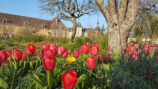 """Visite du Jardin en """"sol vivant"""""""