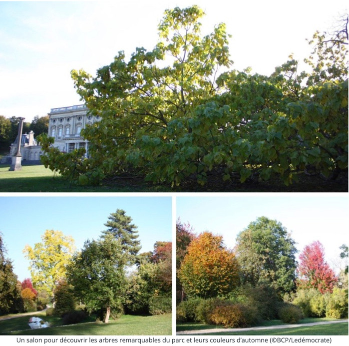 salon des plantes, chateau de Bizy, sortie jardin