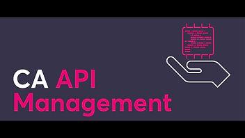 ca_api_management.jpg