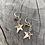 Thumbnail: Double Star Earrings
