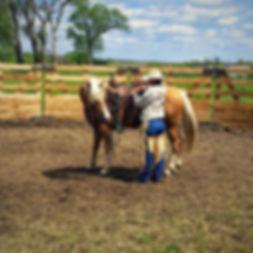 Re-Educating/Problem Horses, Lexy Nuesch Horse Training, Nebraska, horse, NE, Johnstown