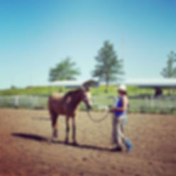 Lexy Nuesch Horse Training, Clinic