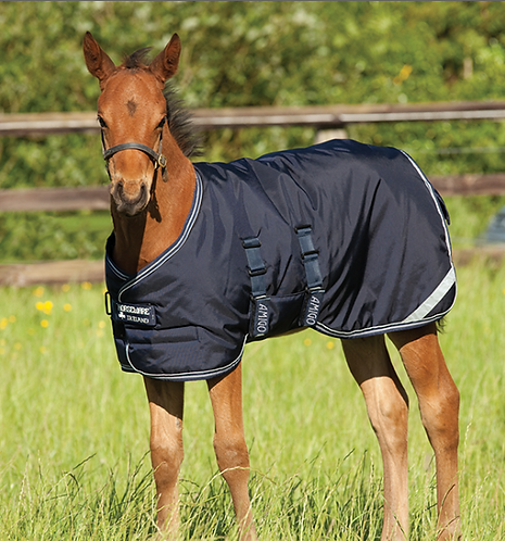 Amigo® Foal Turnout (200g Medium)
