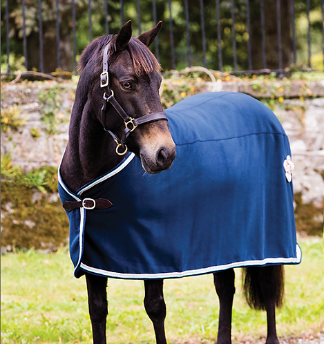 Rambo® Show Blanket (No fill)