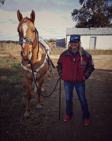 Lincoln, Sold Horses, Lexy Nuesch Horse Training