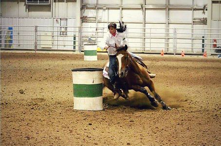 Sonny, gelding, bay, Lexy Nuesch Horse Training, Nebraska, barrel racing