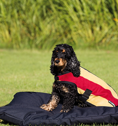Rambo® Deluxe Dog Blanket