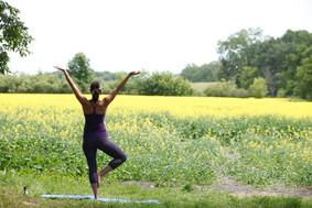 yoga-in-canola-field-2.jpg