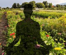 Flower-Field-Yoga-at-Garden-Sweet-1-1.pn