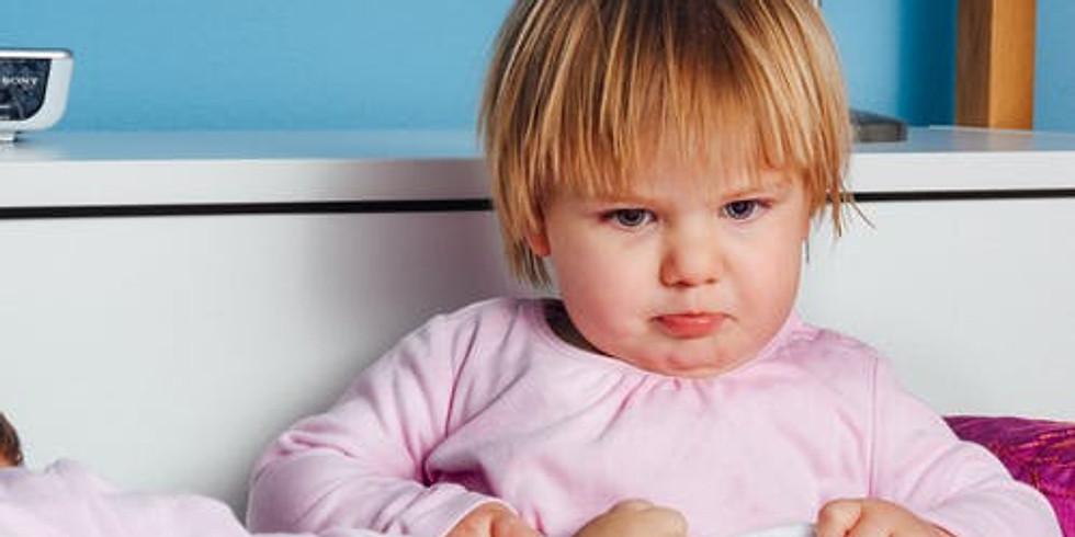 ONLINE Vortrag: Kleinkinder - Große Gefühle, fehlende Worte