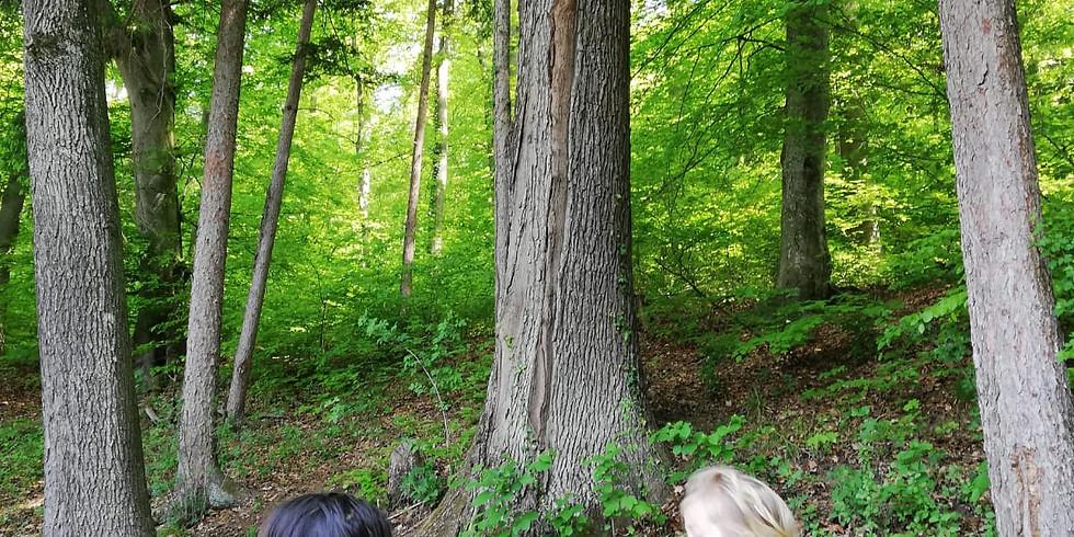 Einstieg jederzeit möglich: Offener Wald mit (Groß-)Eltern (1)