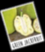 greenjackfruit.png