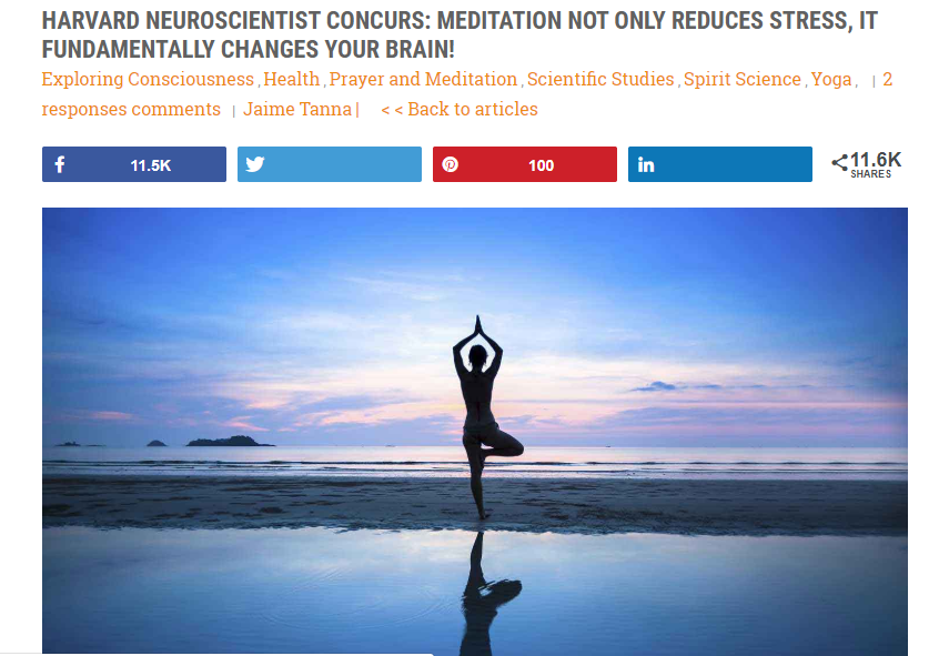 meditaionbrainchange.png