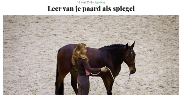 paardalsspiegel.png