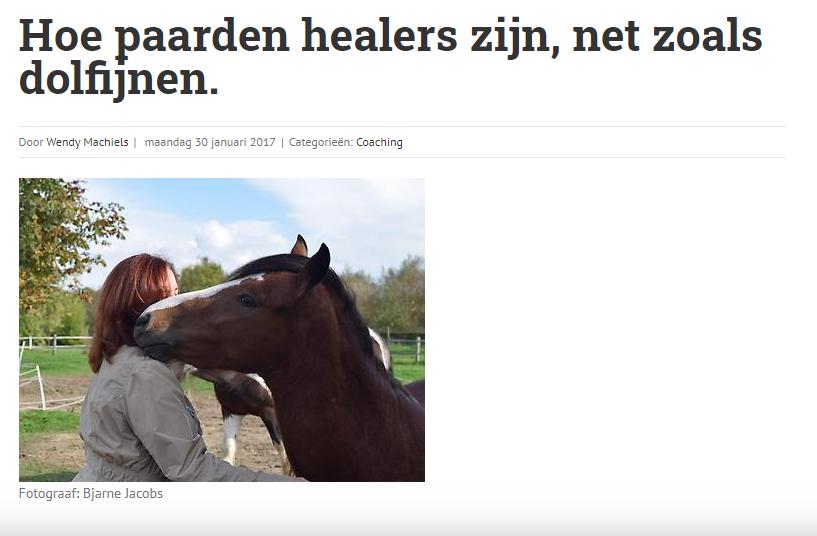 paardenhealers.png