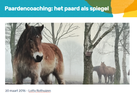 paardenpsychosenet.png