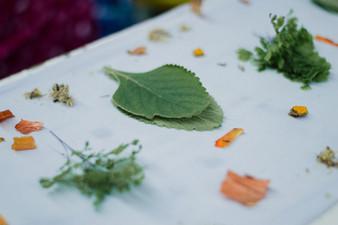 impressao-botanica-0266.jpg