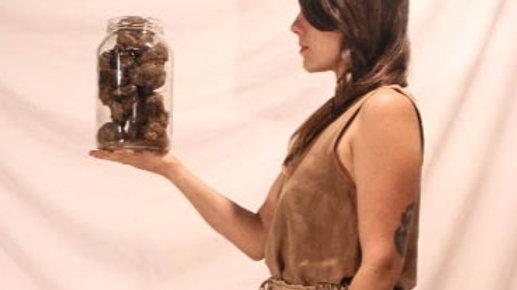 """calça pantacourt de algodão orgânico tingida com cogumelos (série""""micorriza"""")"""