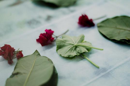 impressao-botanica-0206.jpg