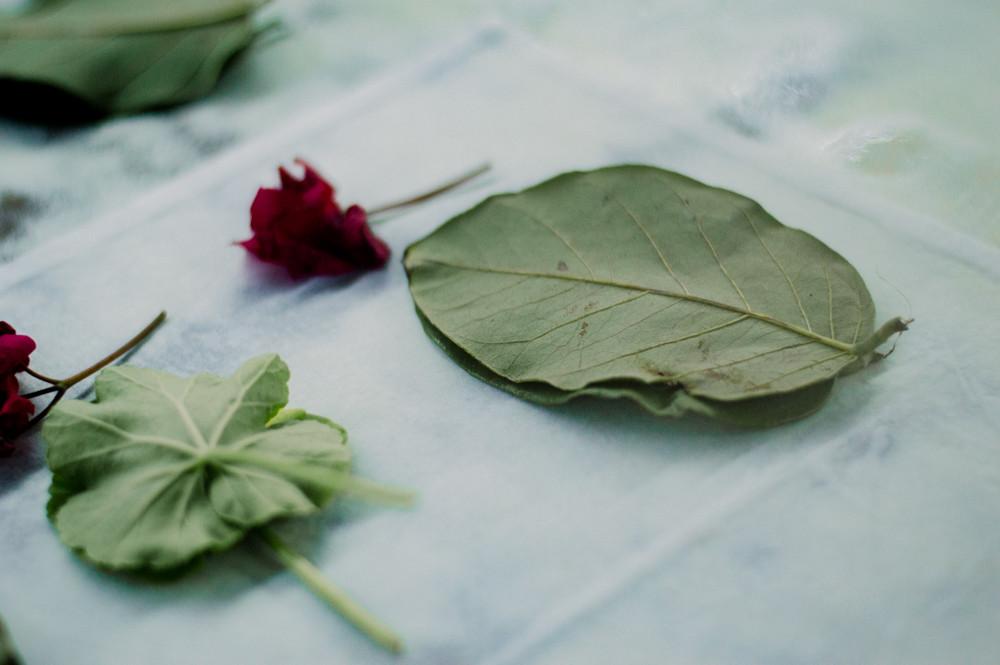 impressao-botanica-0207.jpg