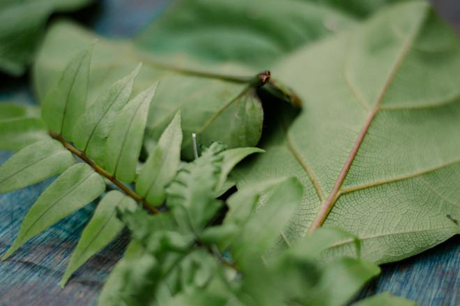 impressao-botanica-0126.jpg