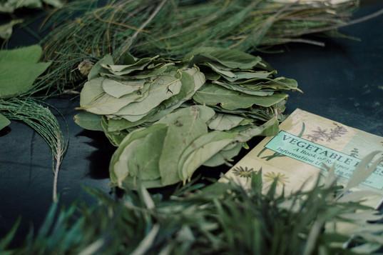 impressao-botanica-0072.jpg