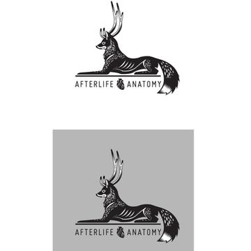 Identity design, Katie Innamorato/Afterlife Anatomy