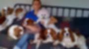 AnimalBehaviourNSW_Petsitting_home.jpg