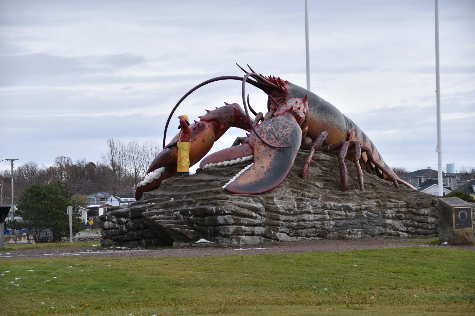 Homard/Lobster Shediac