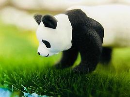 panda-figure01.jpg