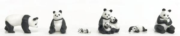 pandafamily.png