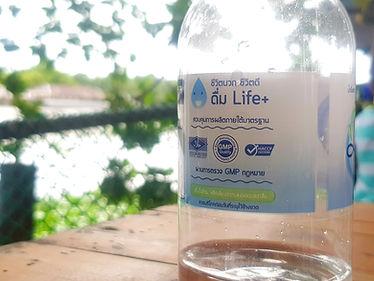 lifeplus water มาตรฐานการผลิต gmp haccp