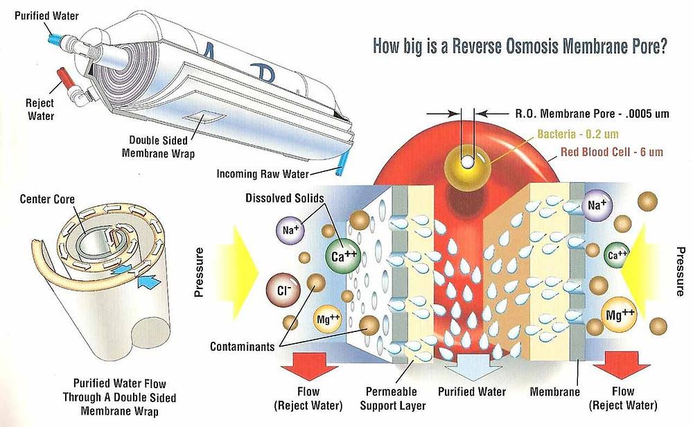 ประสิทธิภาพเมมเบรน ขนาดรูกรอง ของระบบกรองน้ำ reverse osmosis