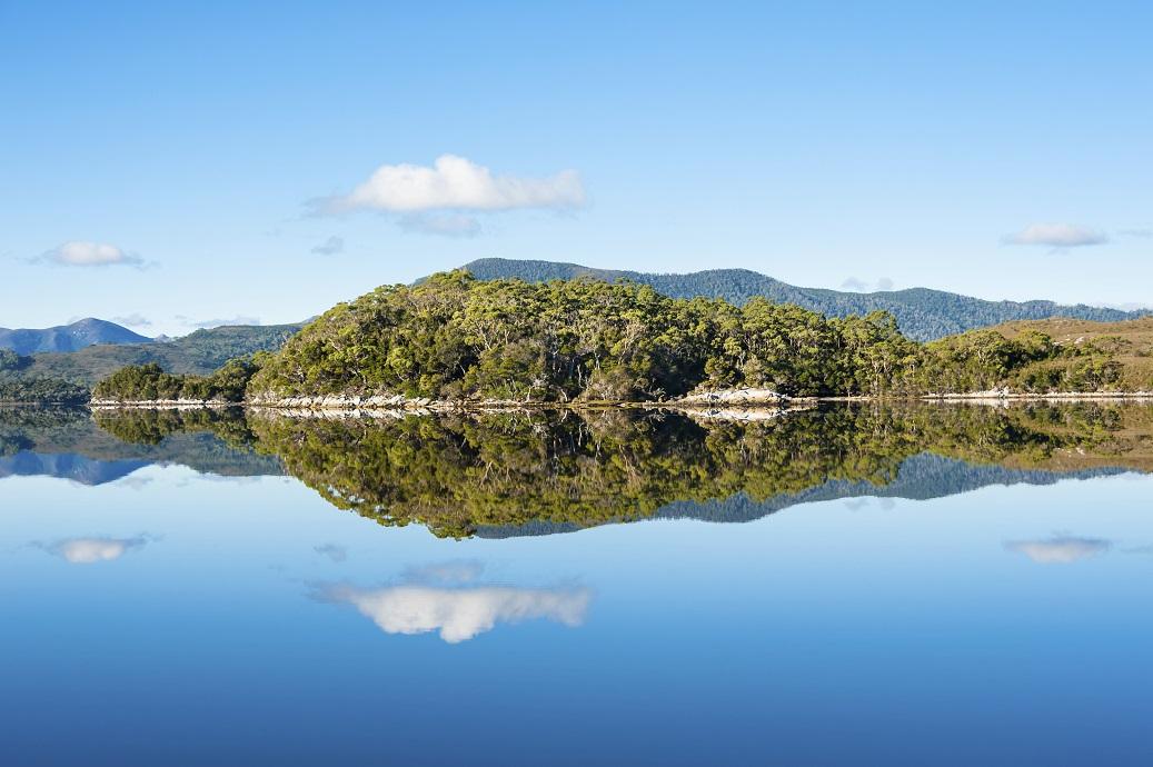 Forest Lagoon, Southwest Tasmania