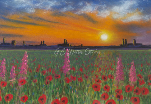 Wildflower Meadow at Sunset