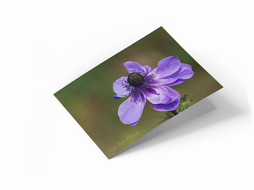 "Purple Petals 7"" x 5"" Landscape Greetings Card"