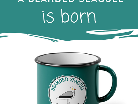 A Bearded Seagull was born!
