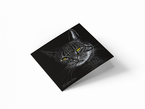 "Distinguished Cat 6"" x 6"" Square Greetings Card"