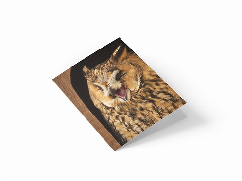 "Laughing Owl 7"" x 5"" Portrait Greetings Card"